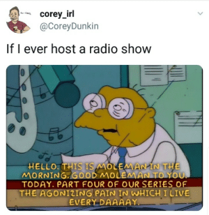 Dank, Hello, and Memes: @CoreyDunkin  If I ever host a radio show  HELLO.THIS IS MOLEMAIN THE  MORNING. GOOD MOUEMAN TO YOU  TODAY. PART FOUR OF OUR SERIES OF  THE AGONIZING PAIN IN WHICH I LIVE  EVERY DAAAAY meirl by Coreo FOLLOW HERE 4 MORE MEMES.