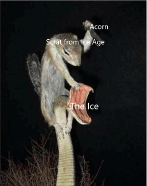 Ice Age, Dank Memes, and Corn: corn  Scrat from ice Age  The  lce Hi people in new