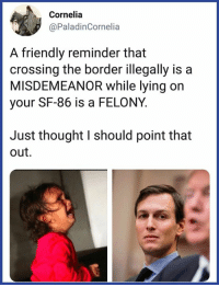 We should remember this.: Cornelia  @PaladinCornelia  A friendly reminder that  crossing the border illegally is a  MISDEMEANOR while lying on  your SF-86 is a FELONY.  Just thought I should point that  out. We should remember this.