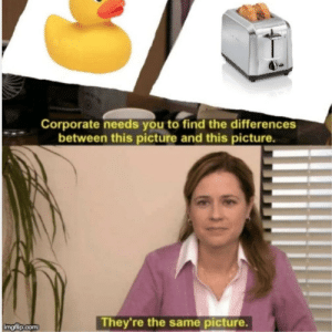 Corporate, Com, and Picture: Corporate needs you to find the differences  between this picture and this picture.  They're the same picture.  imgflip.com
