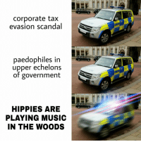 Music, Scandal, and Government: corporate tax  evasion scandal  paedophiles in  upper echelons  of government  HIPPIES ARE  PLAYING MUSIC  IN THE WOODS