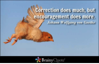 Memes, Quotes, and Leadership: Correction does much, but  encouragement does more.  Johann Wolfgang von Goethe  Brainy  Quote Correction does much, but encouragement does more. - Johann Wolfgang von Goethe https://www.brainyquote.com/quotes/authors/j/johann_wolfgang_von_goeth.html #brainyquote #QOTD #leadership