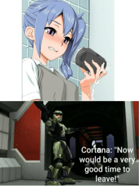 """Anime, Girl, and Good: Cortana: """"Now  WO  would be a very  good time to  leave!"""""""
