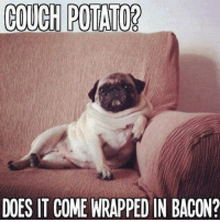 Couch: COUCH POTATO?  DOES IT COME WRAPPED IN BACON?