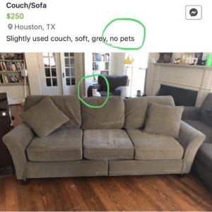 Pets, Couch, and Grey: Couch/Sofa  $250  Houston, TX  Slightly used couch, soft, grey, no pets