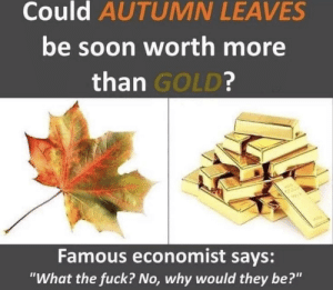 "S T O N K S .: Could AUTUMN LEAVES  be soon worth more  than GOLD?  W  Famous economist says:  ""What the fuck? No, why would they be?"" S T O N K S ."