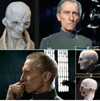 Could this be the reason why they put so much emphasis on Tarkin in Rogue One, because he'll be playing a massive role in Episodes 8 and 9 as Supreme Leader Snoke?: Could this be the reason why they put so much emphasis on Tarkin in Rogue One, because he'll be playing a massive role in Episodes 8 and 9 as Supreme Leader Snoke?