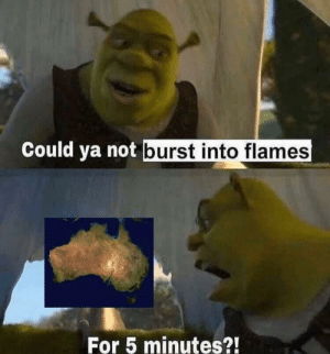 Shrek speaks on behalf of all Australians.: Could ya not burst into flames  For 5 minutes?! Shrek speaks on behalf of all Australians.