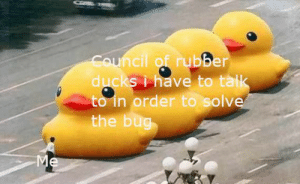 Guns, Ducks, and Rubber: Council of rubber  ducks i have to talk  to in order to solve  the bug  Me Bringing out the big guns