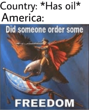 America, Freedom, and Did: Country: *Has oil*  America  Did someone order some  FREEDOM GIVE US YOUR OIL