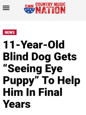 "Music, News, and Country Music: COUNTRY MUSIC  сMN  NATION  NEWS  11-Year-Old  Blind Dog Gets  ""Seeing Eye  Puppy"" To Help  Him In Final  Years Blind Dog Gets Seeing Eye Dog"