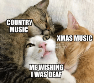 Music, Country Music, and Now: COUNTRY  MUSIC  XMAS MUSIC  MEWISHING  I WAS DEAF Kill Me Now