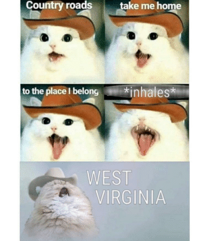 me_irl: Country roads  take me home  to the place I belong  *inhales  WEST  VIRGINIA me_irl