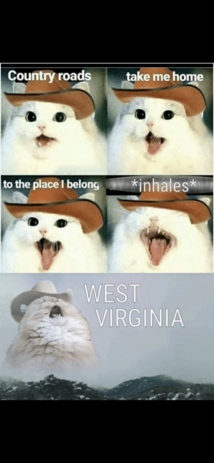 Brings back the best memories: Country roads  take me home  to the place I belong  inhales*  WEST  VIRGINIA Brings back the best memories