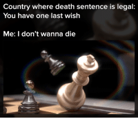 Memes, Death, and 🤖: Country where death sentence is legal:  You have one last wish  Me: I don't wanna die