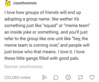 "Friends, Love, and Meme: countvonroo  I love how groups of friends will end up  adopting a group name. like wether its  something just like ""squad"" or ""meme team""  an inside joke or something. and you'll just  refer to the group like one unit like ""hey, the  meme team is coming over,"" and people will  just know who that means. I love it. I love  these little gangs filled with good pals.  Source: countvonroo  232,083 notes  D O"