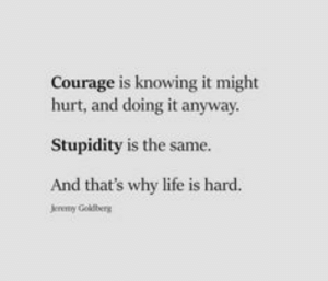 Quotes Sayings and Affirmations: Courage is knowing it might  hurt, and doing it anyway  Stupidity is the same.  And that's why life is hard.  Jereny Goldberg Quotes Sayings and Affirmations