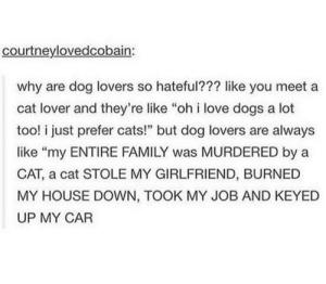 "Cats, Dogs, and Family: courtneylovedcobain:  why are dog lovers so hateful??? like you meet a  cat lover and they're like ""oh i love dogs a lot  too! i just prefer cats!"" but dog lovers are always  like ""my ENTIRE FAMILY was MURDERED by a  CAT, a cat STOLE MY GIRLFRIEND, BURNED  MY HOUSE DOWN, TOOK MY JOB AND KEYED  UP MY CAR Cat."