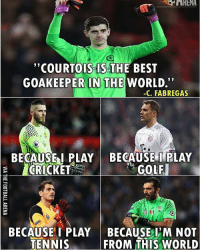 "Nice One Fabregas 😂😂: ""COURTOIS IS THE BEST  GOAKEEPER IN THE  WORLD.""  -C. FABREGAS  BECAUSE I PLAY BECAUSE I PLAY  GOLF  CRICKET  BECAUSE I PLAY BECAUSE I M NOT  TENNIS  FROM THIS WORLD Nice One Fabregas 😂😂"