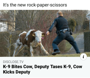 Cow, Deputy, K-9, SHOOT!: Cow, Deputy, K-9, SHOOT!