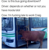 "Fucking, Tumblr, and Work: Cow:  is  this  bus  going  downtown?  Driver: depends on whether or not you  have moola lolol  Cow: I'm fucking late to work Craig  @MasiPopa  ANI2672 <p><a href=""http://awesomesthesia.tumblr.com/post/174723990667/dont-be-an-asshole-craig"" class=""tumblr_blog"">awesomesthesia</a>:</p>  <blockquote><p>Don't be an asshole, Craig.</p></blockquote>"