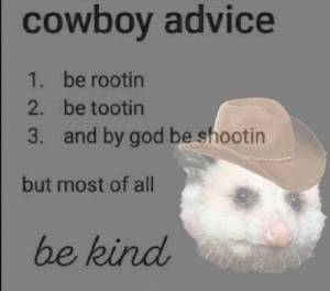: cowboy advice  1. be rootin  2. be tootin  and by god be shootin  3.  but most of all  be kind
