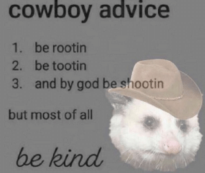 https://t.co/YXPT5fDFYH: COwboy advice  1. be rootin  2. be tootin  and by god be shootin  3.  but most of all  be kind https://t.co/YXPT5fDFYH