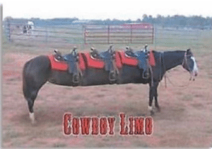 Reddit, Cowboy, and Who: COWBOY LIB Who wants to accompany me on the cowboy limo