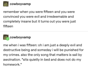 15 year olds are evil tho: cowboyvamp  remember when you were fifteen and you were  convinced you were evil and irredeemable and  completely insane but it turns out you were just  fifteen  cowboyvamp  me when i was fifteen: oh i am just a deeply evil and  destructive being and someday i will be punished for  my crimes. also the only song that matters is sail by  awolnation. *sits quietly in bed and does not do my  homework.* 15 year olds are evil tho