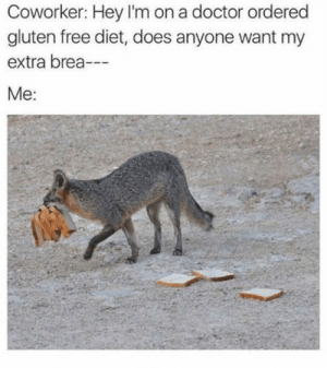 23 Funniest Memes About Gluten-Free Diets #LOL #Funny #Glutenfree: Coworker: Hey I'm on a doctor ordered  gluten free diet, does anyone want my  extra brea-  Me: 23 Funniest Memes About Gluten-Free Diets #LOL #Funny #Glutenfree
