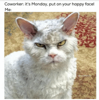 Can u not: Coworker: It's Monday, put on your happy face!  Me  aturntfortom Can u not
