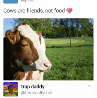 Memes, 🤖, and Traps: Cows are friends, not food  trap daddy  aterminally chill Bruhh | For more @aranjevi