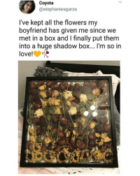 Af, Boxing, and Creepy: Coyota  @stephanieagarza  I've kept all the flowers my  boyfriend has given me since we  met in a box and I finally put them  into a huge shadow box... I'm so in  love! This shit is creepy AF 🏃 | follow @fuckersbelike for more