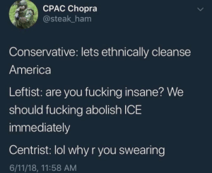 America, Fucking, and Lol: CPAC Chopra  @steak_ham  Conservative: lets ethnically cleanse  America  Leftist: are you fucking insane? We  should fucking abolish ICE  immediately  Centrist: lol why r you swearing  6/11/18, 11:58 AM jdjdkdkdkdkkdkfkffkf but seriously