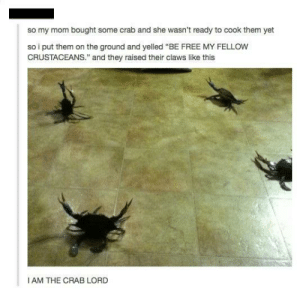 Crab Crab by Seraphion91 MORE MEMES: Crab Crab by Seraphion91 MORE MEMES
