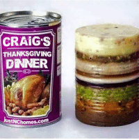 Thanksgivings of Late Capitalism  -adminotov: CRAIG S  THANKSGIVING  DNNER  justNChomes.com Thanksgivings of Late Capitalism  -adminotov