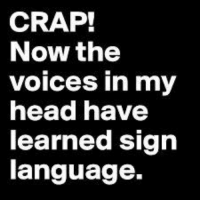 voices in my head: CRAP!  Now the  voices in my  head have  learned sign  language.
