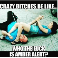 Crazy Bitches Be Like: CRAZY  BITCHES BE LIKE  WHOTHE FUCK  ISAMBER ALERT?