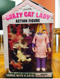<p>My Kind Of Action Figure.</p>: CRAZY CAT LAD  ACTION FIGURE  COMES WITH 6 CATS!  WARNING:  CHOKING HAZARD Smal Ports <p>My Kind Of Action Figure.</p>