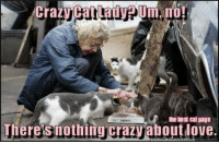 Memes, 🤖, and Cat Lady: Crazy Cat Lady pUm, no!  the best eat page  Theres nothing crazy aboutdove