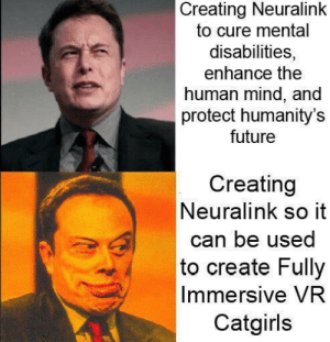 Future, Mind, and Human: Creating Neuralink  to cure mental  disabilities,  enhance the  human mind, and  protect humanity's  future  Creating  Neuralink so it  can be used  to create Fully  Immersive VR  Catgirls