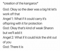 Lets Work: *creation of the kangaroo*  God: Okay so the deer was a big hit let's  work off that  Angel 1: What if it could carry it's  offspring with it for protection  God: Okay that's kind of weak Sharon  but we'll add it  Angel 2: What if it could kick the shit out  of you  God: There it is