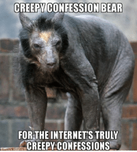 Bear: CREEPY CONFESSION BEAR  FOR THE INTERNETS TRULY  CREEPY CONFESSIONS  Une Alliance