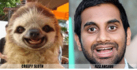 Is it me, or does this sloth look familiar? ~Michael: CREEPY SLOTH  AZIZ ANSARI Is it me, or does this sloth look familiar? ~Michael