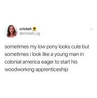 America, Cute, and Fashion: cricket  @cricket_cg  sometimes my low pony looks cute but  sometimes i look like a young man in  colonial america eager to start his  woodworking apprenticeship low pony = new fashion or Declaration of Independence signee?