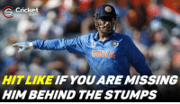 Memes, 🤖, and Dhoni: Cricket  S Shots  HIT LIKE IF YOU ARE MISSING  HIM BEHIND THE STUMPS The captain cool ! M.S Dhoni best man on the field.