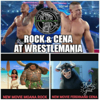 Funny, Girls, and Memes: crie  cricket  ROCK& CENA  AT WRESTLEMANIA  NEW MOVIE MOANA ROCK  NEW MOVIE FERDINAND CENA Therock & johncena 😲😲😲 wwe wweraw wwelive wwelife wwememes wwefunny wrestling wwenetwork wwenxt tna nxt tv memes funny likeforlike like4like gta ps4 xboxone xbox wwefan myfan nba nfl nhl nascar girls movie