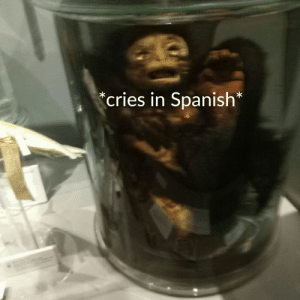 Saw this at a museum: cries in Spanish* Saw this at a museum
