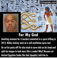 Crazy, DeMarcus Cousins, and God: crimeslab.com  A  For My God  Awaiting sentence for 4 murders commited in a spree killing in  2013, Nikko Jenkins went on a self-mutilation spree too!  He cut his penis off! He also tried to carve 666 on his head and  split his tongue to look more like a snake! Why? Becuase an  Ancient Egyptian Snake like God (Apophis) told him to. Many people think he self mutilated to escape the death sentence. I think he is pretty convincing. In any case it did not work. He showed no remorse either. . . . . . devil kill dead crazy unstable scary mental caught justice omaha