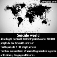 Pretty crazy ~Matt: Crimeslab.com  Suicide world  According to the World Health Organization over 800 000  people die due to Suicide each year.  That Equates to 2 191 people per day.  The three main methods off committing suicide is Ingestion  of Pesticides, Hanging and firearms. Pretty crazy ~Matt